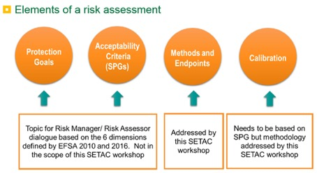 Elements of a risk assessment