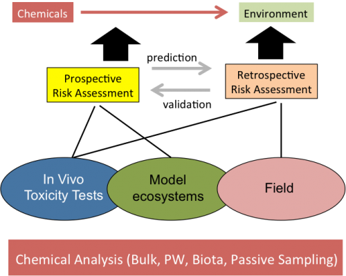 Tasks, challenges and tools of environmental risk assessment of sediments