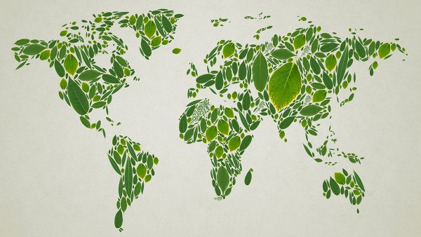 Leaves depicting global map